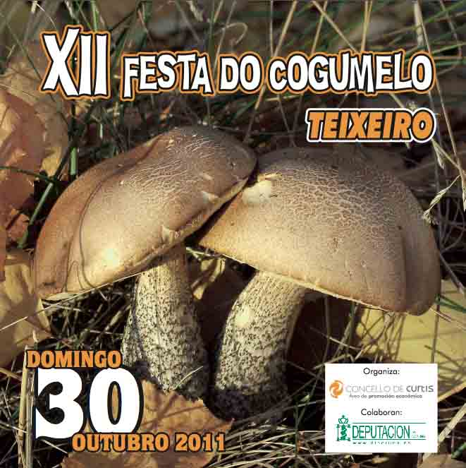 xiicogumelo